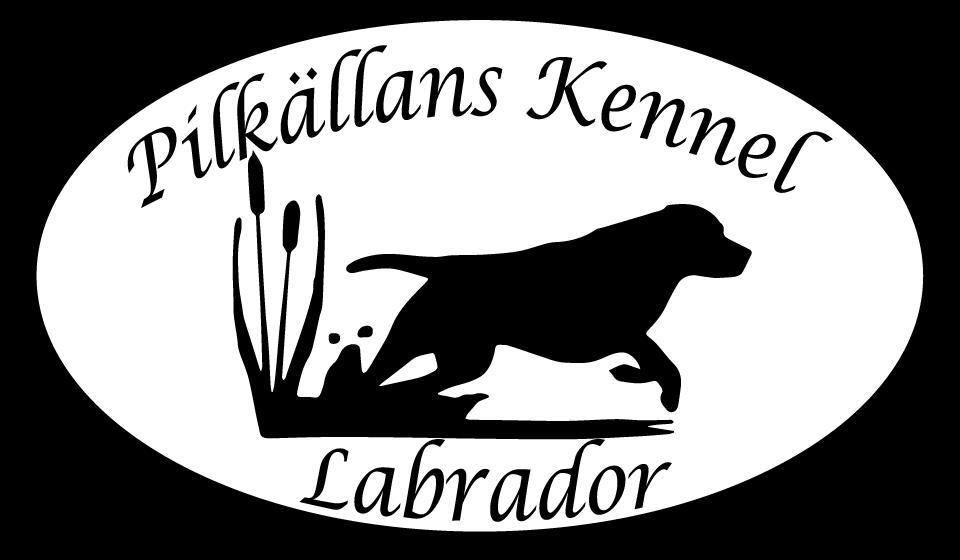 Pilkällans Kennel